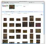 Screen shot 2009-10-28 at 1.13.09 PM