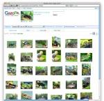 Screen shot 2009-10-28 at 1.13.53 PM